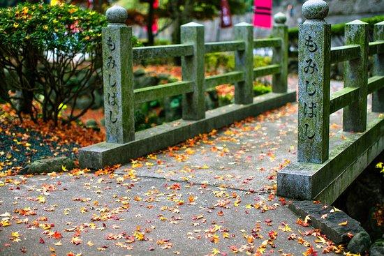 入口の石橋は風情がある