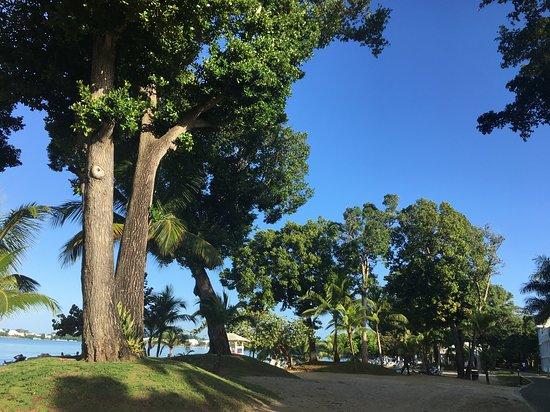 Hotel Riu Palace Tropical Bay: Negril