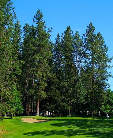 Coeur d' Alene Public Golf Club