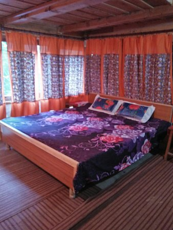 Banjar, India: Single room with a double bed
