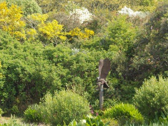 Aldouran Wetland Garden