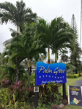 Palm Grove: from the road