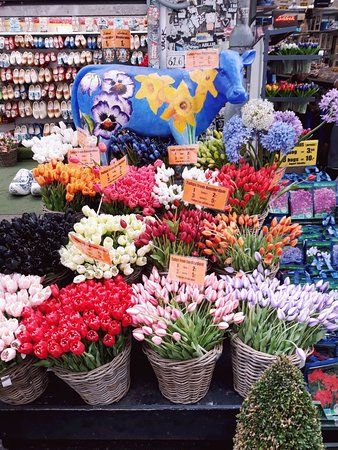 Bloemenmarkt Amsterdam 2019 All You Need To Know Before You Go
