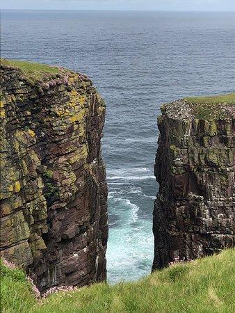Bilde fra Handa Island