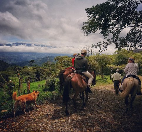 Queveri Horseback Riding Tours