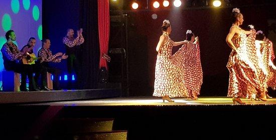 Abendessen, Mittelalter- und Flamenco-Show im Valltordera Castle (Shuttlebus inklusive): Cuadro flamenco y bailaoras