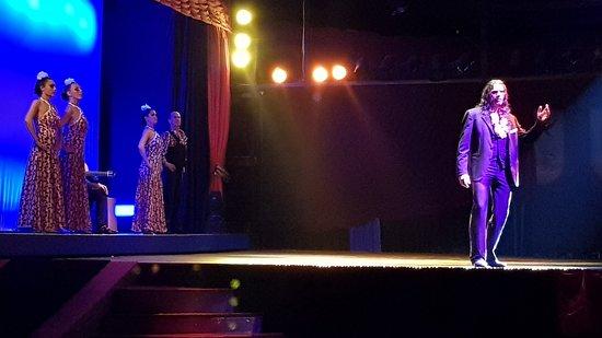 Abendessen, Mittelalter- und Flamenco-Show im Valltordera Castle (Shuttlebus inklusive): Bailaor solista