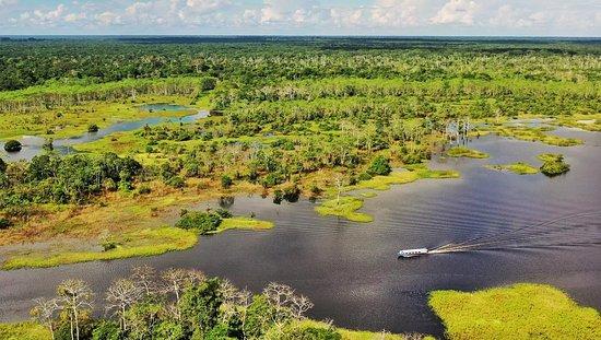 Região de Loreto, Peru: Para internarme en el corazón de la reserva Pacaya-Samiria tuve que contratar este barco rápido que veis en la foto con un motor de 200 caballos. Pacaya-Samiria es la segunda mayor reserva natural de Perú y una de las más extensas del Amazonas. Tiene 21.000 kilómetros cuadrados, como la provincia de Badajoz. Aún con ese motor tardé 12 horas de navegación en llegar a la zona  elegida.