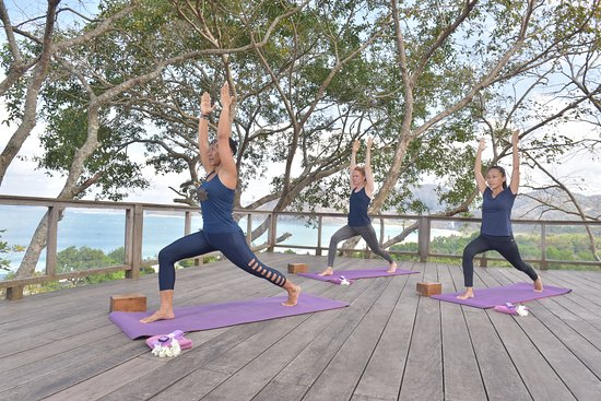 Morning classes at our elevated Yoga Platform with sweeping views