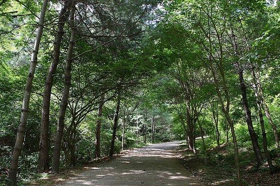 Korea National Arboretum