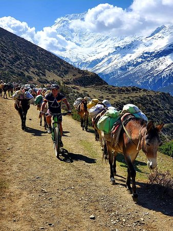 Mountain Biking Trip to Annapurna Circuit via Thorong La Pass 5416m in April 2019 with Swiss-Hong Kong Group. Trip organized by Swiss Family Treks and Expedition. Photo was taken on the way to Yak Kharka.