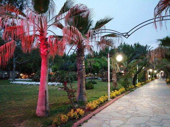 Queen's Park Le Jardin Resort: jardin éclairé le soir