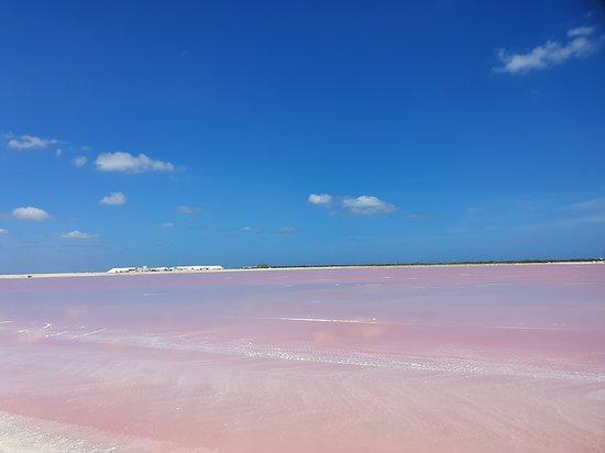 Cancun Pink Lagoon Tour