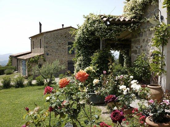 Roccatederighi, Italy: Il giardino
