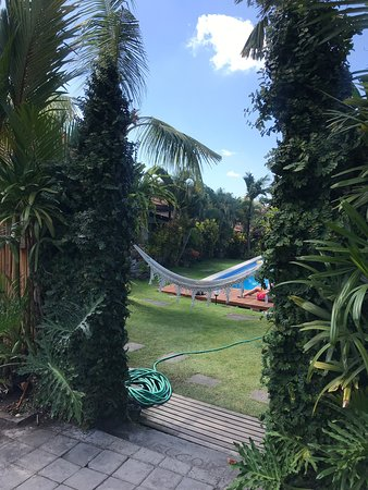 Mote Surfstay Photo