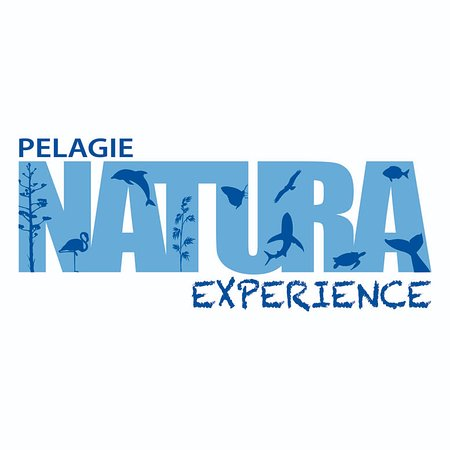 Pelagie Natura Experience