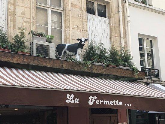 La sentinelle de «La Fermette», au 86 rue Montorgueil, Paris 2ème, vous voit arriver de loin