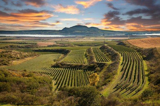 Explore Moravia