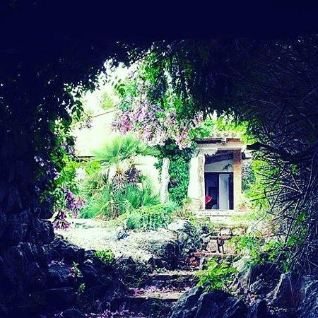 Maserof Museum Winery: Entrada bodega