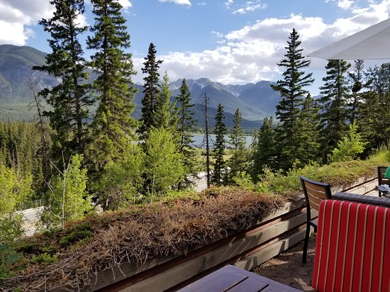 The Juniper Bistro: What a view