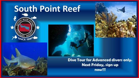 Studio Blue Cozumel Divers: advanced divers only