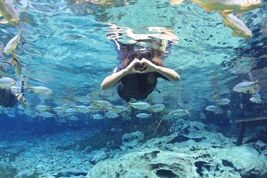 Foto dos passeios Buraco das Araras, Foto do passeio do Aquario e foto do passeio Boca da Onça...Imperdíveis!!!