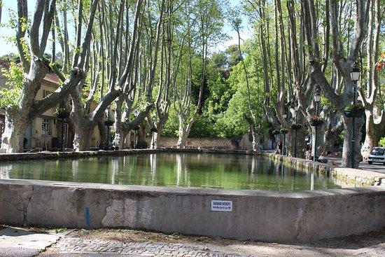 Cucuron, Franciaország: L'étang, endroit calme et paisible , ombragé par de magnifiques platanes de Provence. On y trouve un joli petit Marché chaque Mardi