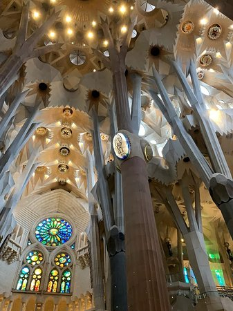 Basilica of the Sagrada Familia Admission Ticket with Tower Access: Nave details