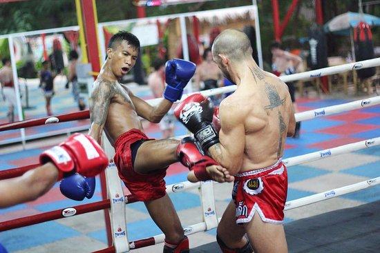 Phangan Muay Thai and Fitness Gym