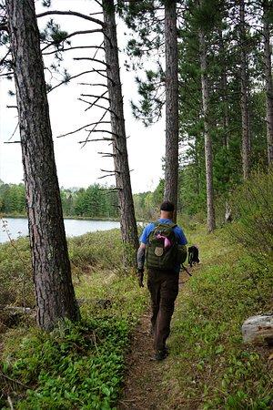 Side Lake, MN: Narrower trails along Pickerel lake
