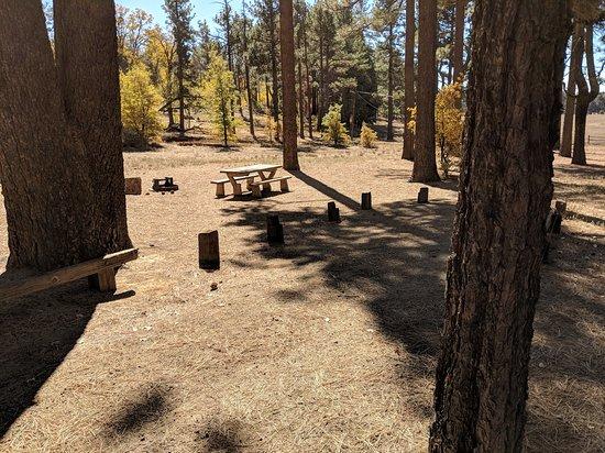 Mount Laguna, كاليفورنيا: Mt. Laguna Campground site