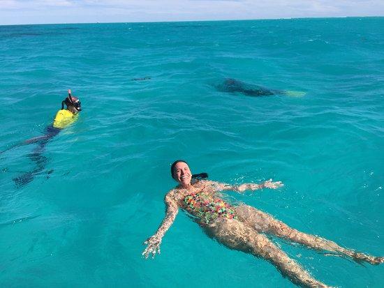 Ningaloo Whaleshark n Dive: Loving the water!