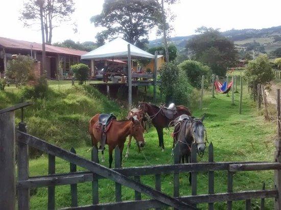 Subachoque, Colombia: Portal del campo la finca Restaurante