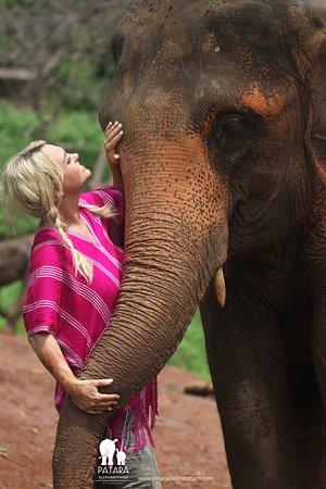 Patara Elephant Farm - Private Tours – fénykép
