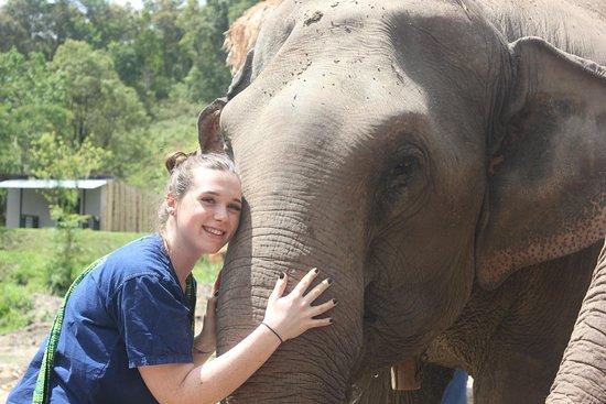 Chiangmai Elephant Refuge