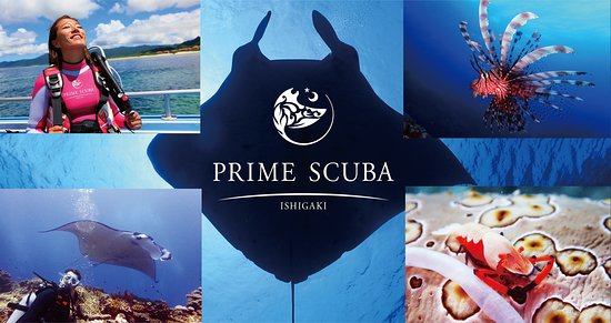 Prime Scuba Ishigaki Diving Center - Day Tour