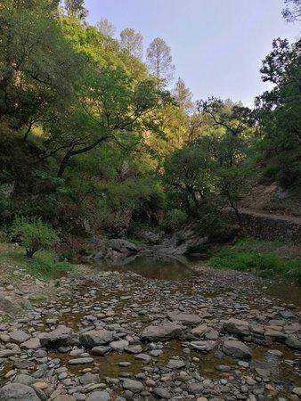 Bhalu Gaad Waterfalls (Mukteshwar) - 2019 What to Know Before You Go