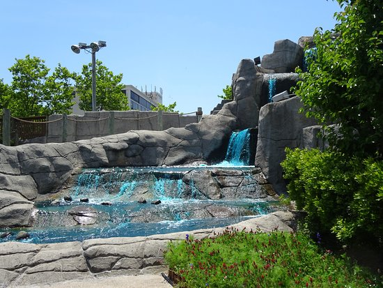 Waterfall apart of the course decor