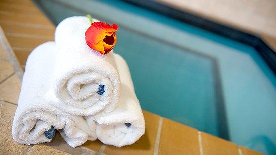 Holiday Inn Hotel & Suites Mississauga: Pool