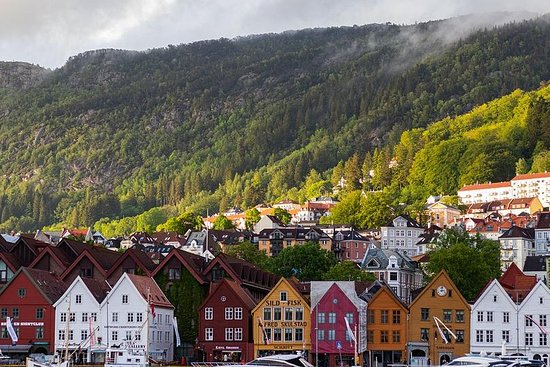 Bergen Cruizer