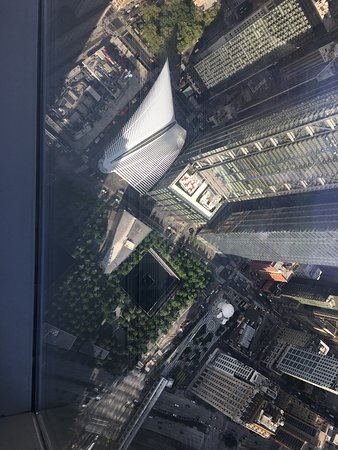 View from one world trade building