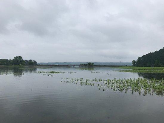 Kayak Lake Guntersville