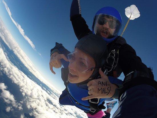 Fallschirmsprung Taupo - 15.000 Fuß Tandemsprung Foto