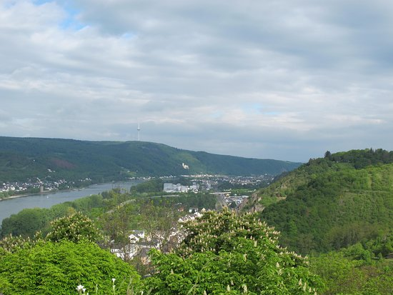 View of Braubach