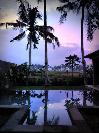 Dawn over the rice paddy from the lounge room at Anggira Villa. Such a beautiful place to stay