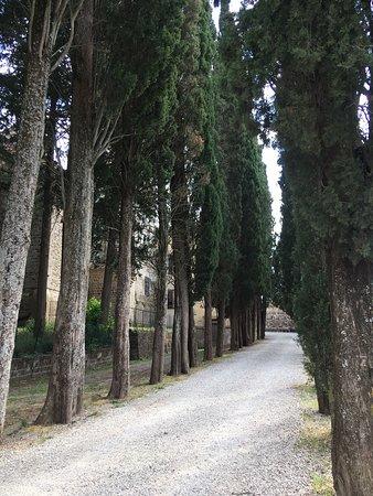 Foto de Badia a Passignano