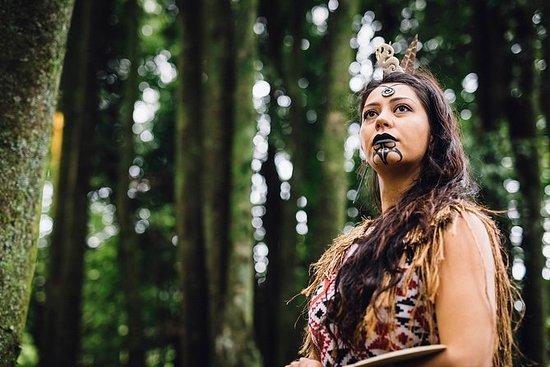 Cena hangi y espectáculo maorí en...