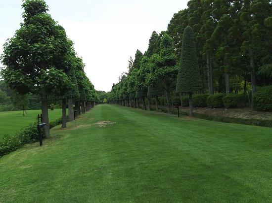 Wakunaga Manji Memorial Garden: ヨーロッパ風の庭園もある。