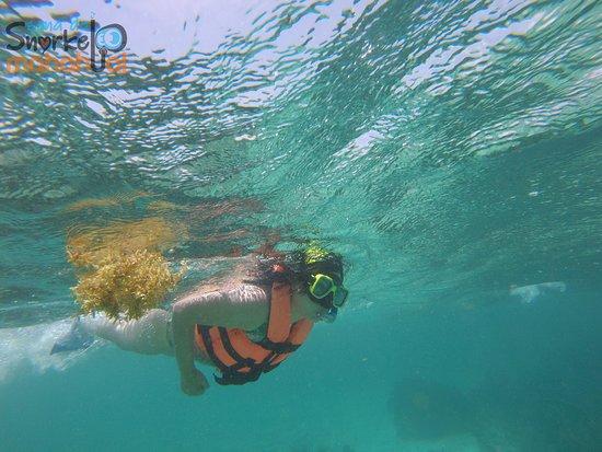 Mahahual Beach: mañana de snorkel