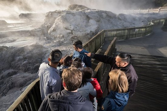 Waitomo Caves and Rotorua attractions...